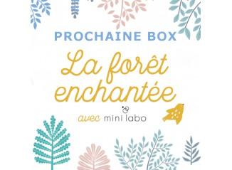 Box La Forêt Enchantée - Prévente