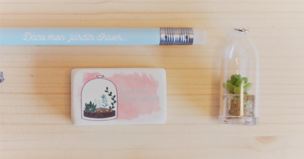 Gomme et crayon terrarium box papeterie Saperlipapier