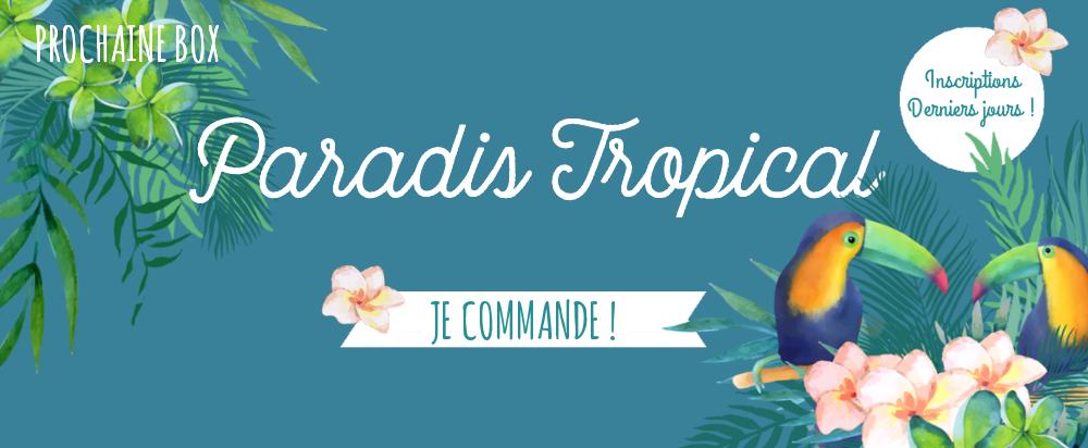 Box papeterie paradis Tropical par Saperlipapier