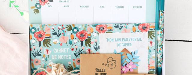 Box Belle de Jour