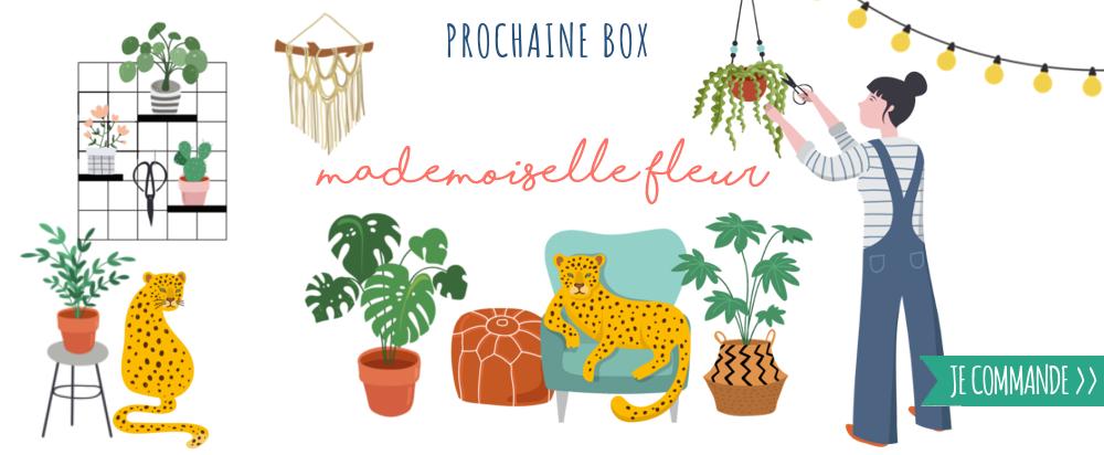 Papeterie créative, urban jungle, végétal, fleur